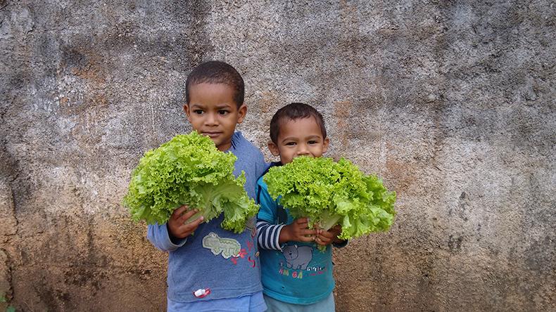 Crianças com alfaces nas mãos.